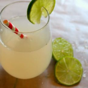 low-carb tom collins cocktail recipe is a delicious classic reworked to have only .6 carbs per serving - Lowcarb-ology.com