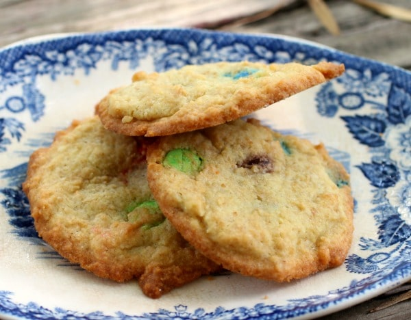 low carb M&M cookies