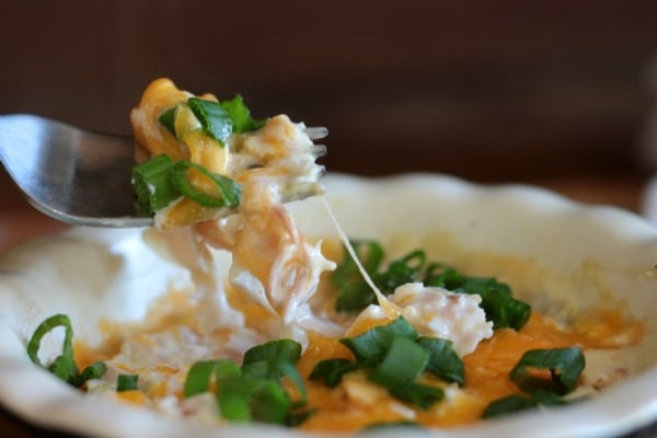 creamy turkey enchilada casserole is low carb and gluten free. From lowcarb-ology.com