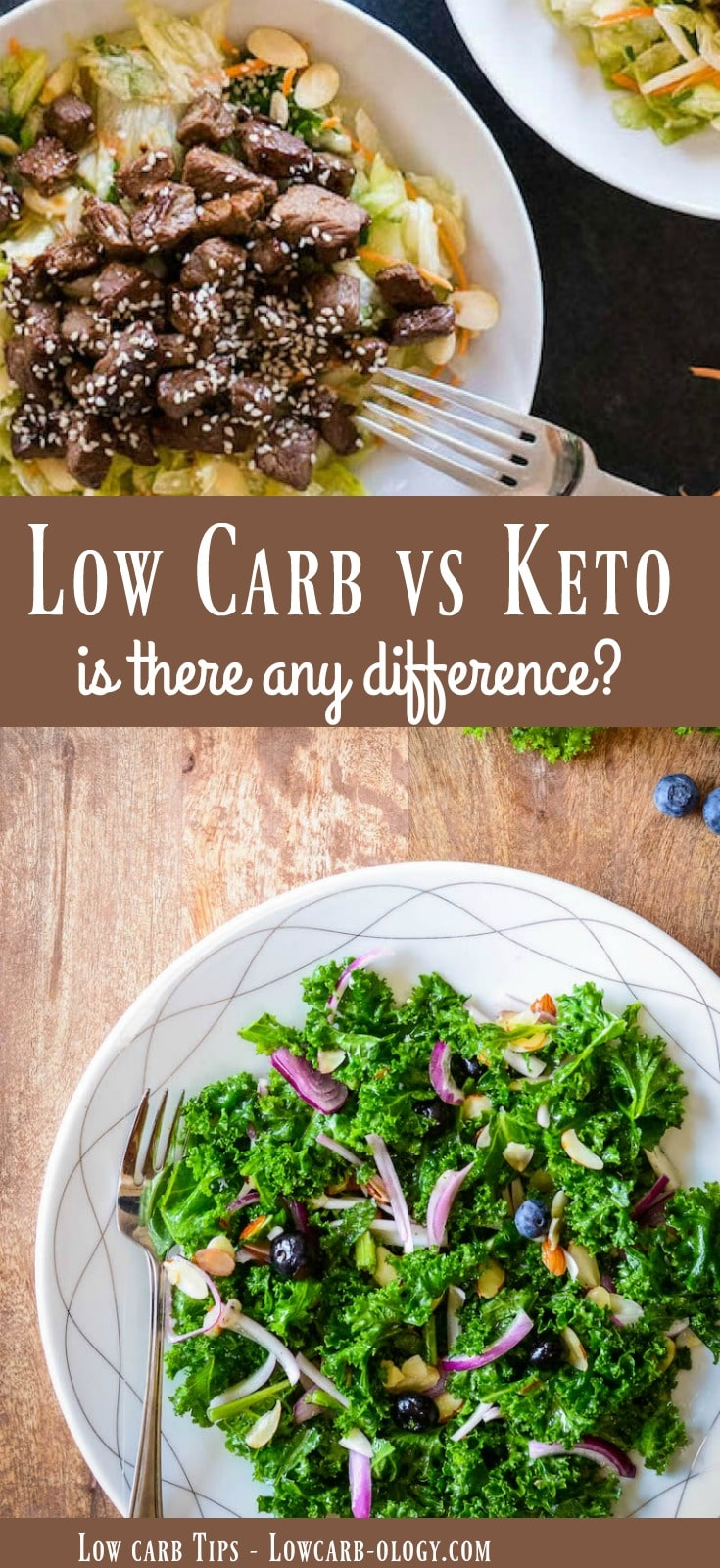 Low carb vs keto - is there any difference between the two diets? Find out more here plus how to get a helpful meal plan! from Lowcarb-ology.com