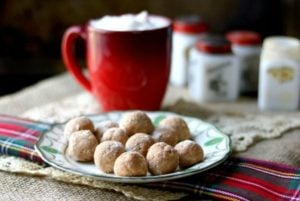 a horizontal image of gingerbread cream cheese fat bombs on a green and white vintage plate. antique red and white spice jars are in the background