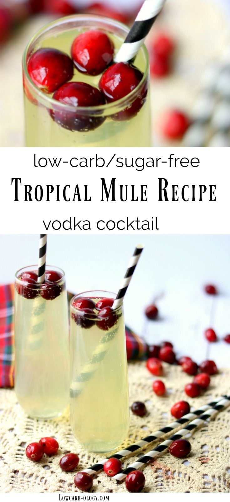 Low carb tropical mule recipe is made with vodka. Light and fizzy, this cocktail is full of coconut and pineapple flavor but has just 1 carb and 135 calories per serving. #lowcarb #vodkacocktails from Lowcarb-ology.com