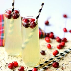tropical mule recipe image - two cocktails with cranberries surrounding them